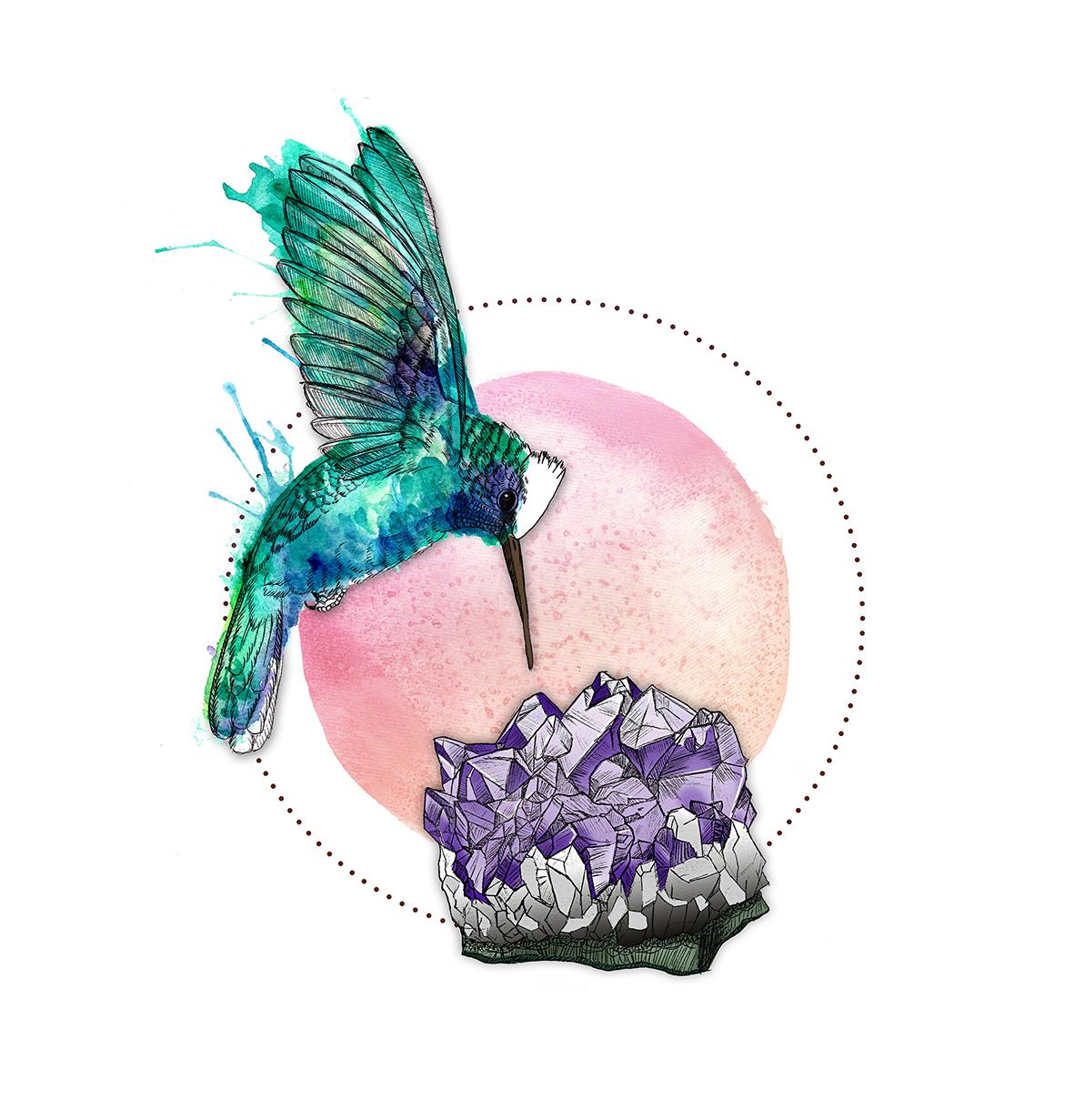 kolibri_amethyst